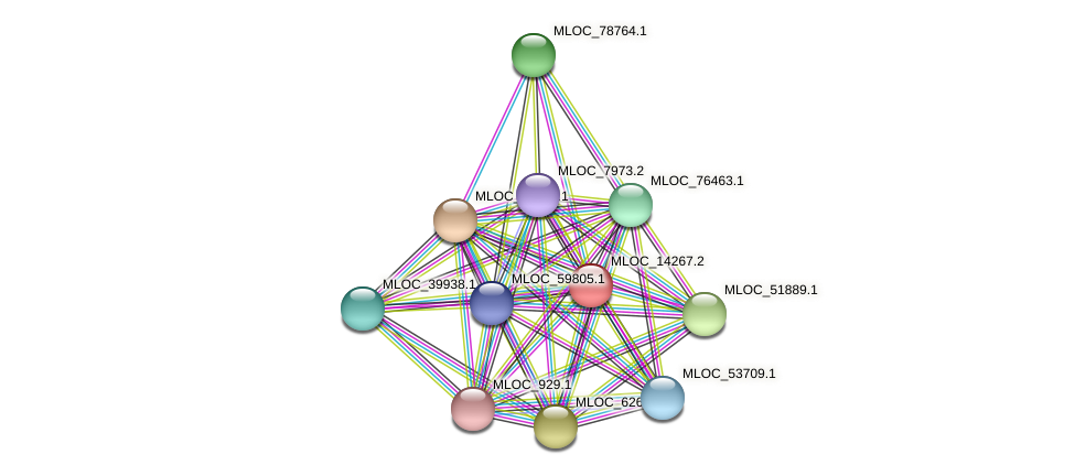 MLOC_14267.2 protein (Hordeum vulgare) - STRING interaction network