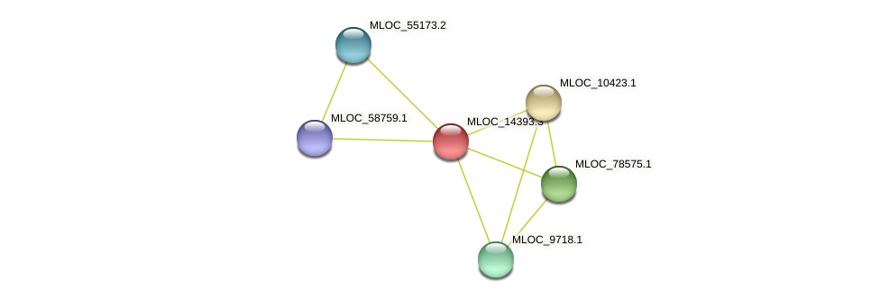 MLOC_14393.3 protein (Hordeum vulgare) - STRING interaction network