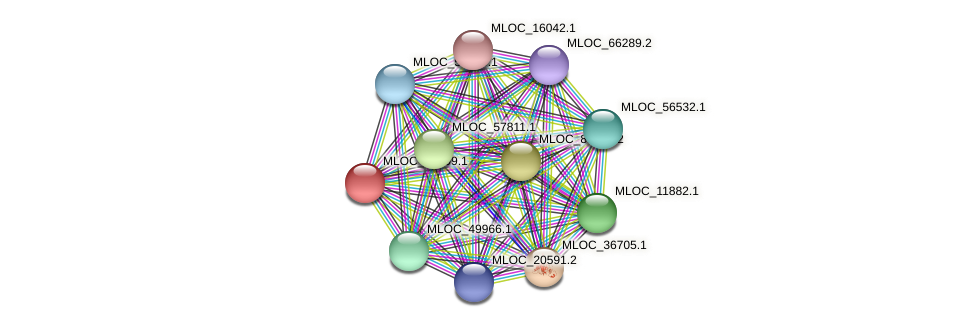 MLOC_14399.1 protein (Hordeum vulgare) - STRING interaction network