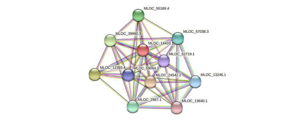 MLOC_14433.1 protein (Hordeum vulgare) - STRING interaction network