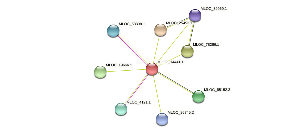 MLOC_14441.1 protein (Hordeum vulgare) - STRING interaction network