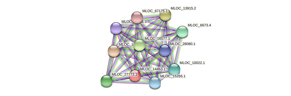 MLOC_14463.1 protein (Hordeum vulgare) - STRING interaction network