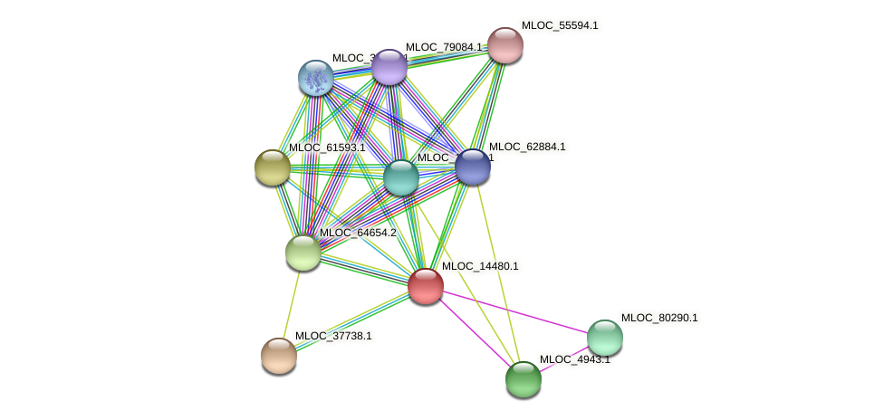 MLOC_14480.1 protein (Hordeum vulgare) - STRING interaction network