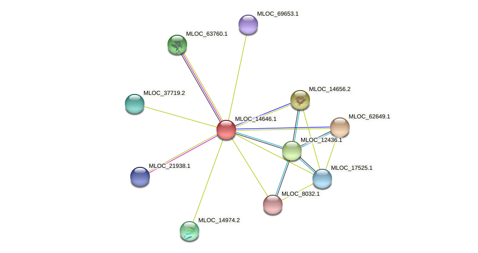 MLOC_14646.1 protein (Hordeum vulgare) - STRING interaction network