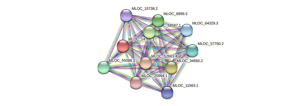 MLOC_14700.1 protein (Hordeum vulgare) - STRING interaction network