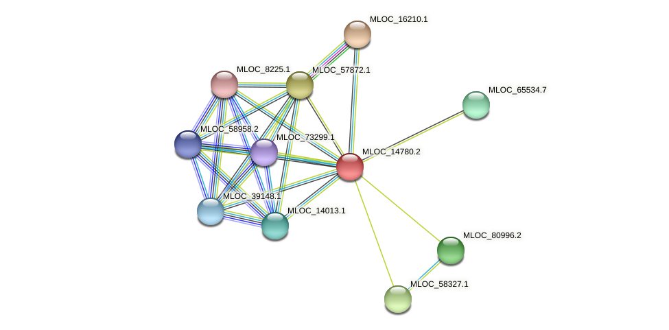 MLOC_14780.2 protein (Hordeum vulgare) - STRING interaction network