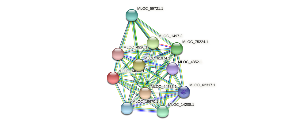 MLOC_14802.1 protein (Hordeum vulgare) - STRING interaction network