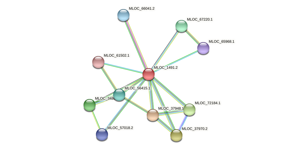 MLOC_1491.2 protein (Hordeum vulgare) - STRING interaction network