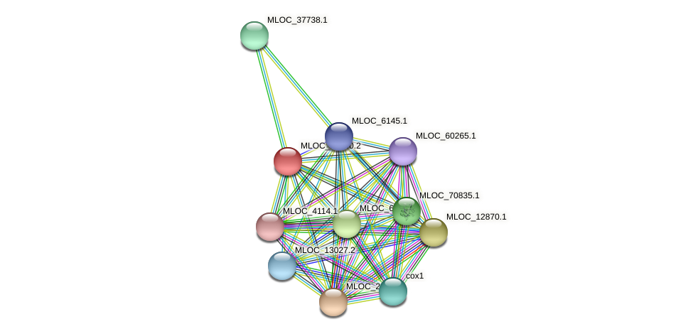 MLOC_14940.2 protein (Hordeum vulgare) - STRING interaction network