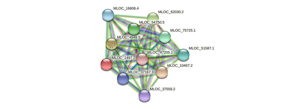 MLOC_1497.2 protein (Hordeum vulgare) - STRING interaction network