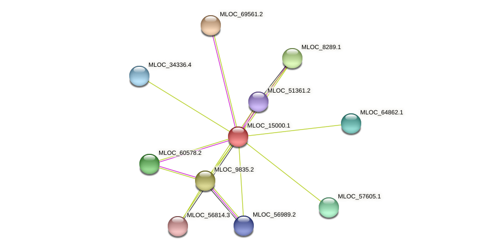 MLOC_15000.1 protein (Hordeum vulgare) - STRING interaction network
