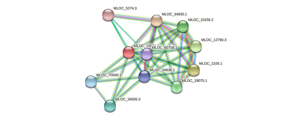 MLOC_15021.1 protein (Hordeum vulgare) - STRING interaction network
