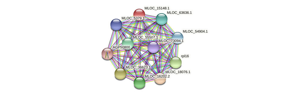 MLOC_15148.1 protein (Hordeum vulgare) - STRING interaction network
