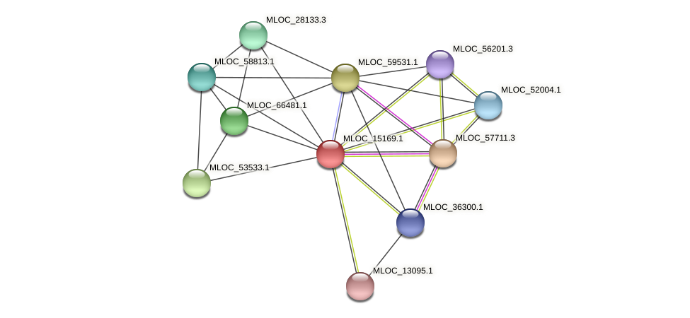 MLOC_15169.1 protein (Hordeum vulgare) - STRING interaction network