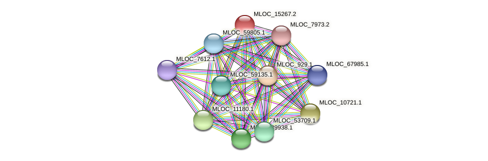 MLOC_15267.2 protein (Hordeum vulgare) - STRING interaction network