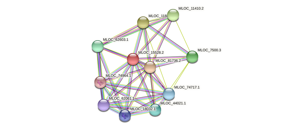 MLOC_15528.2 protein (Hordeum vulgare) - STRING interaction network