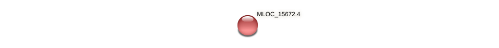 MLOC_15672.1 protein (Hordeum vulgare) - STRING interaction network