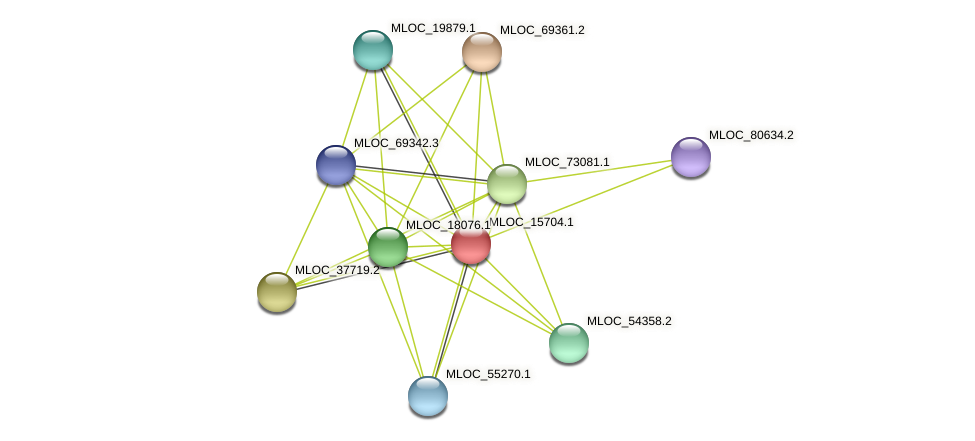 MLOC_15704.1 protein (Hordeum vulgare) - STRING interaction network