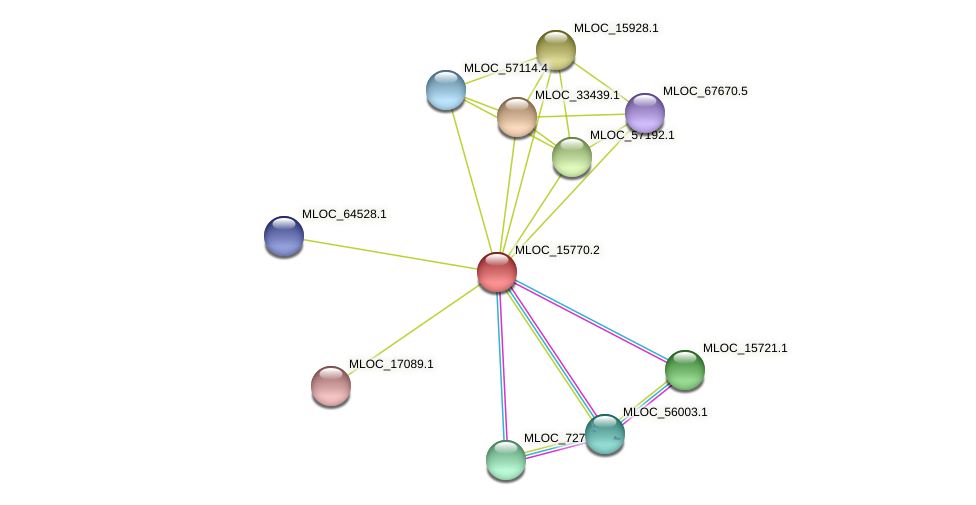 MLOC_15770.2 protein (Hordeum vulgare) - STRING interaction network