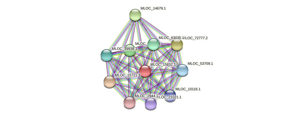 MLOC_15832.1 protein (Hordeum vulgare) - STRING interaction network