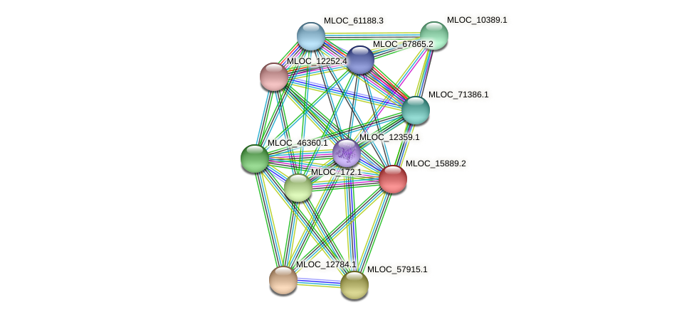 MLOC_15889.2 protein (Hordeum vulgare) - STRING interaction network