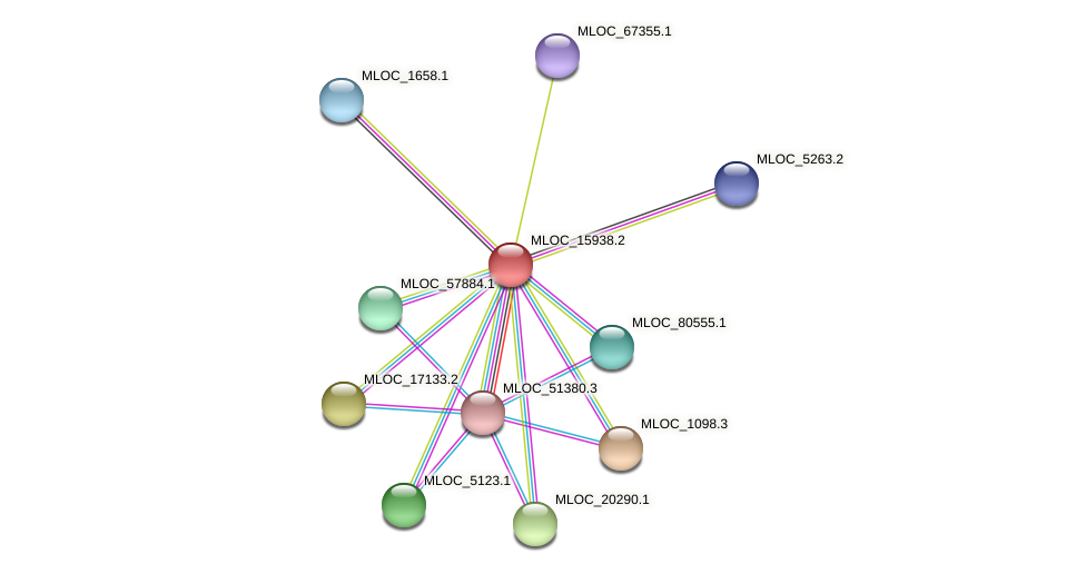 MLOC_15938.2 protein (Hordeum vulgare) - STRING interaction network