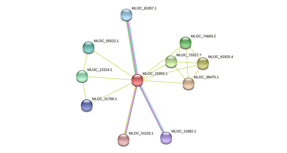 MLOC_15955.1 protein (Hordeum vulgare) - STRING interaction network