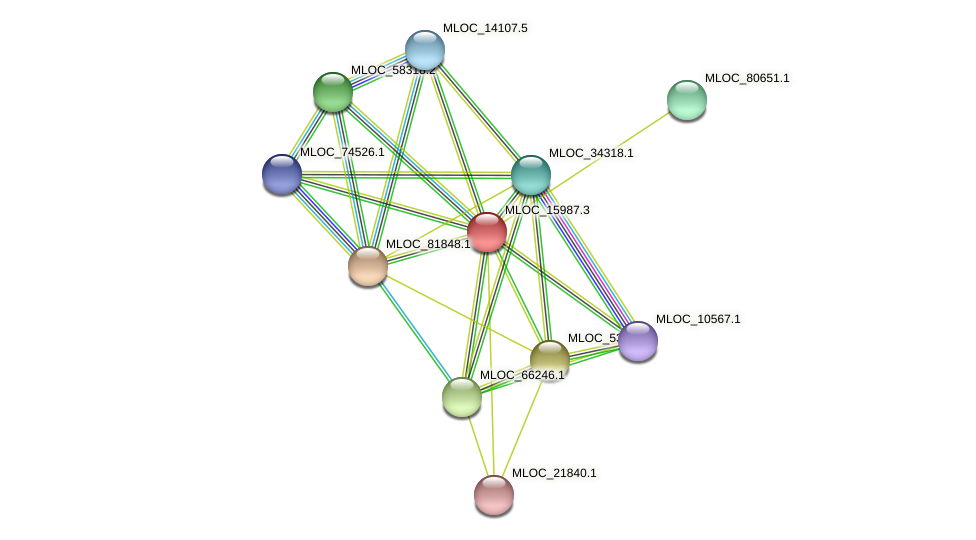 MLOC_15987.3 protein (Hordeum vulgare) - STRING interaction network