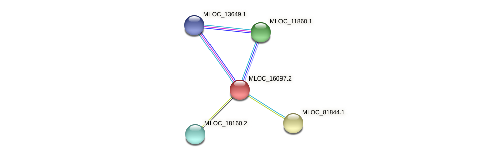 MLOC_16097.2 protein (Hordeum vulgare) - STRING interaction network