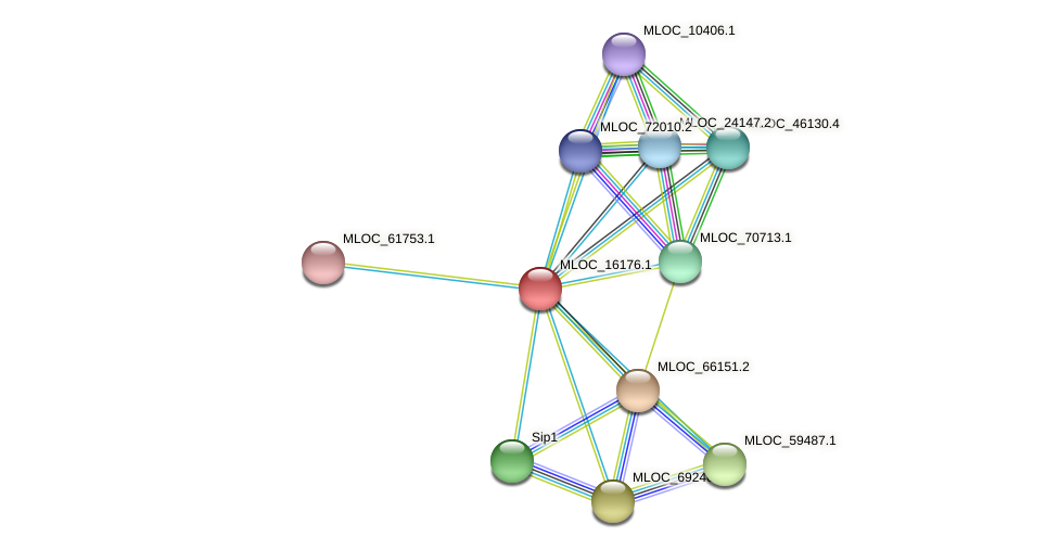 MLOC_16176.1 protein (Hordeum vulgare) - STRING interaction network