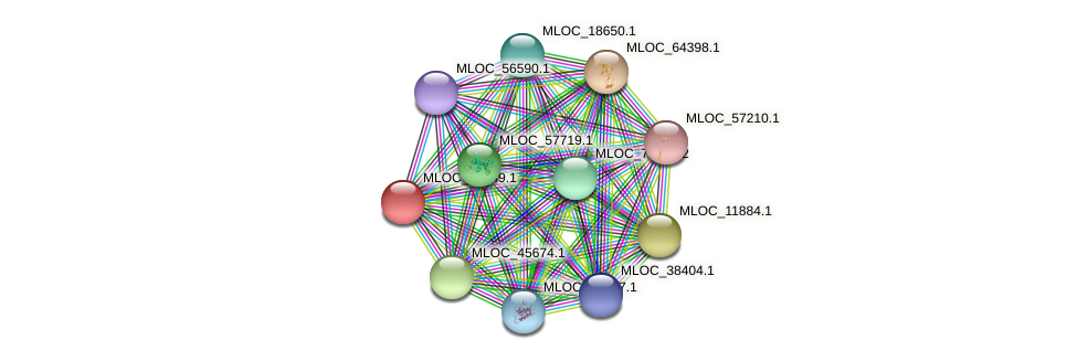 MLOC_16249.1 protein (Hordeum vulgare) - STRING interaction network