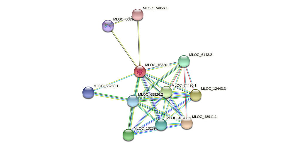 MLOC_16320.1 protein (Hordeum vulgare) - STRING interaction network