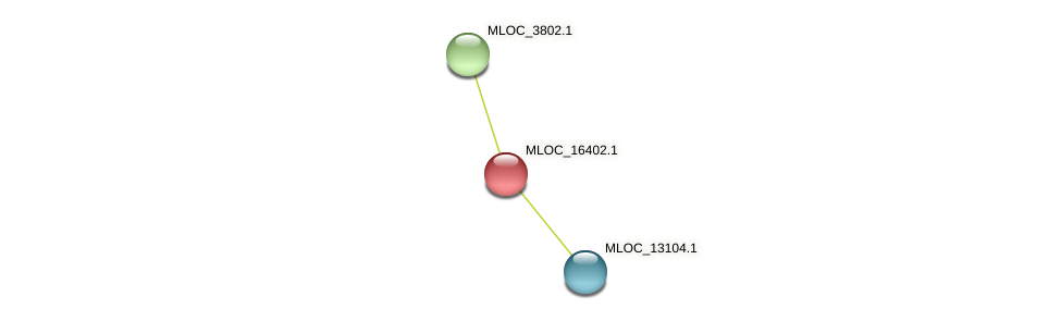 MLOC_16402.1 protein (Hordeum vulgare) - STRING interaction network