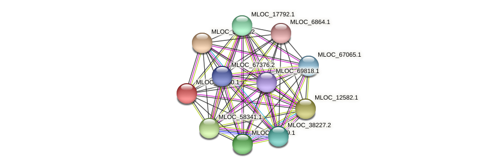 MLOC_16500.1 protein (Hordeum vulgare) - STRING interaction network