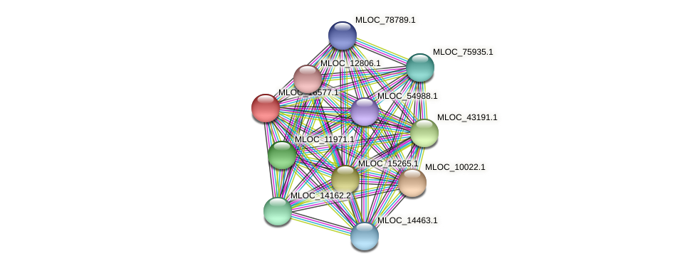 MLOC_16577.1 protein (Hordeum vulgare) - STRING interaction network