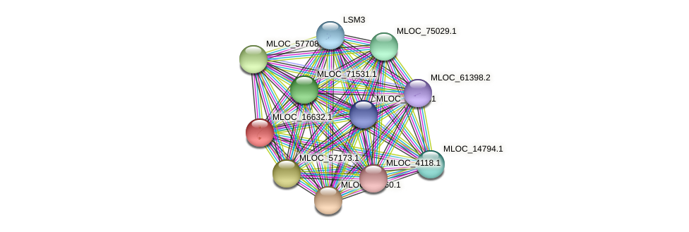 MLOC_16632.1 protein (Hordeum vulgare) - STRING interaction network