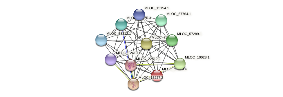 MLOC_17029.4 protein (Hordeum vulgare) - STRING interaction network