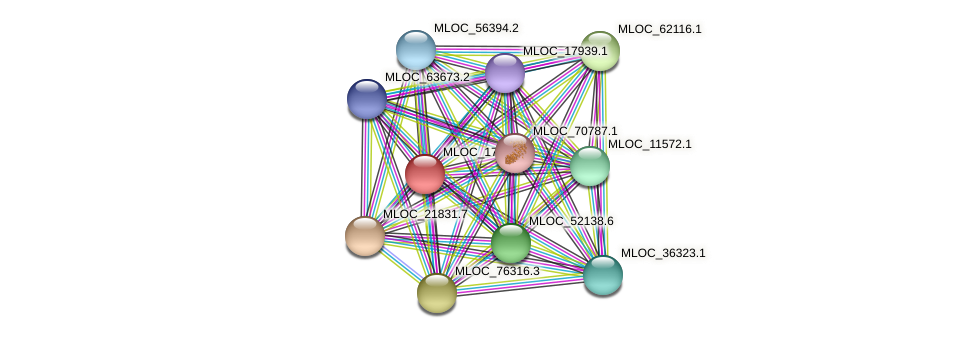 MLOC_17069.1 protein (Hordeum vulgare) - STRING interaction network