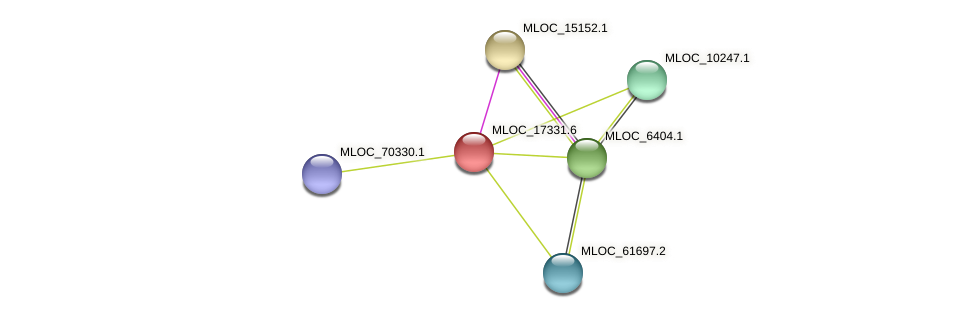 MLOC_17331.6 protein (Hordeum vulgare) - STRING interaction network
