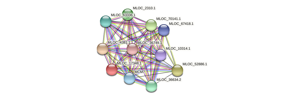 MLOC_17348.1 protein (Hordeum vulgare) - STRING interaction network