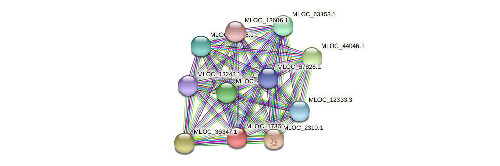MLOC_17360.1 protein (Hordeum vulgare) - STRING interaction network