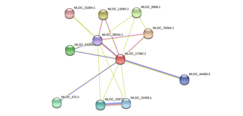MLOC_17382.1 protein (Hordeum vulgare) - STRING interaction network