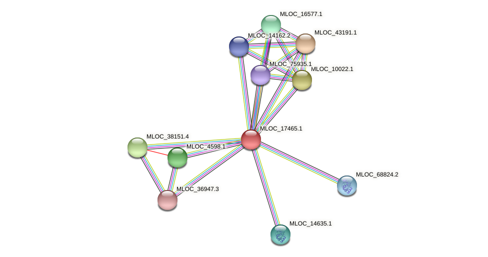 MLOC_17465.1 protein (Hordeum vulgare) - STRING interaction network