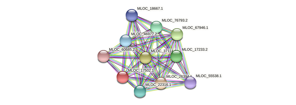MLOC_17502.1 protein (Hordeum vulgare) - STRING interaction network