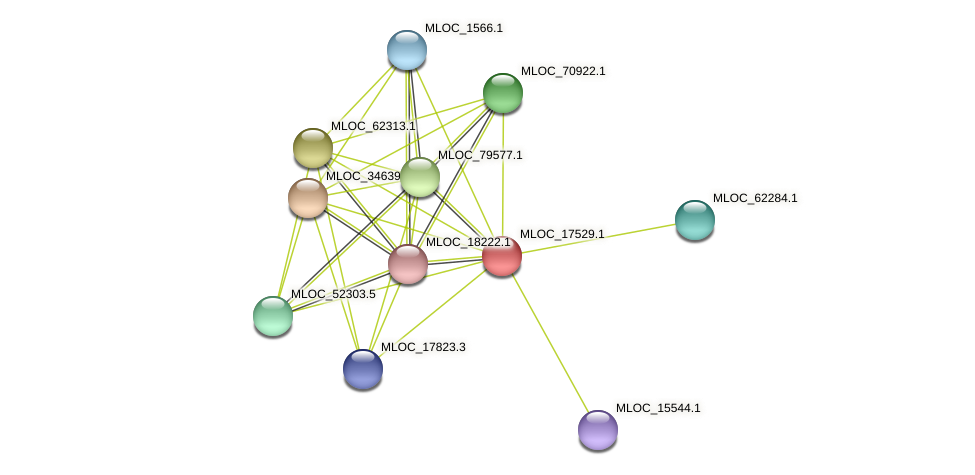 MLOC_17529.1 protein (Hordeum vulgare) - STRING interaction network