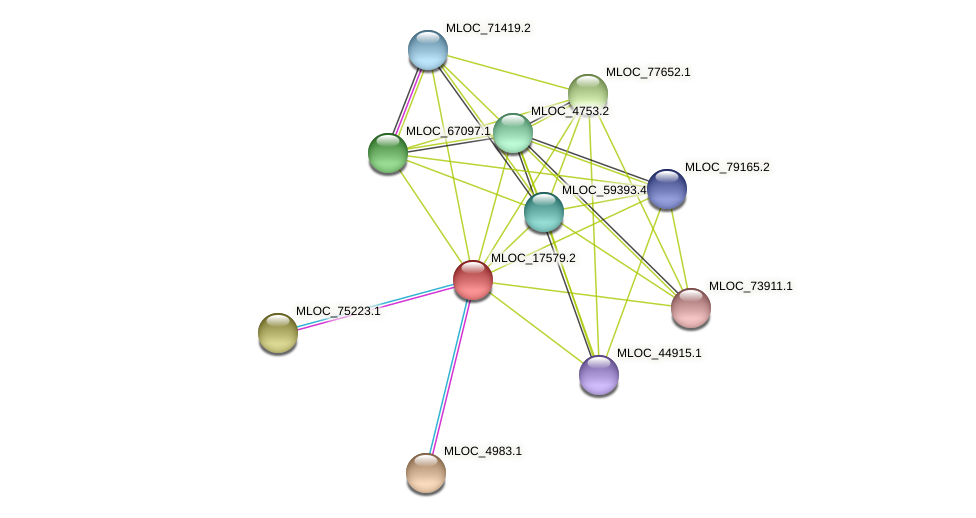 MLOC_17579.2 protein (Hordeum vulgare) - STRING interaction network