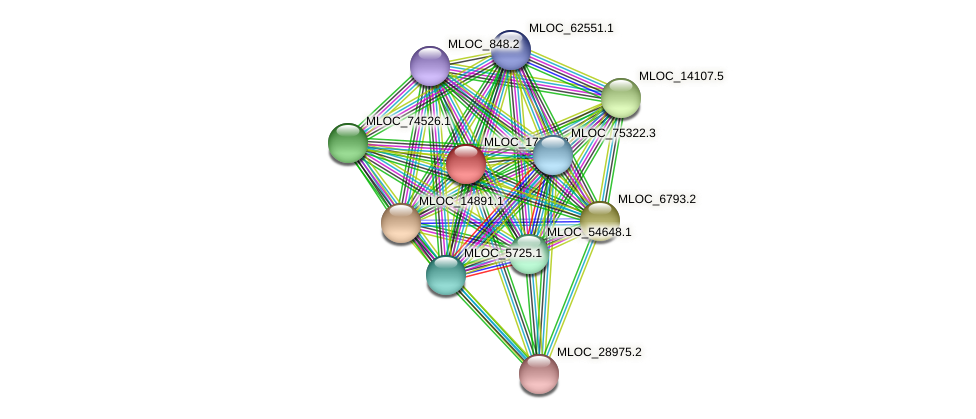 MLOC_17741.2 protein (Hordeum vulgare) - STRING interaction network