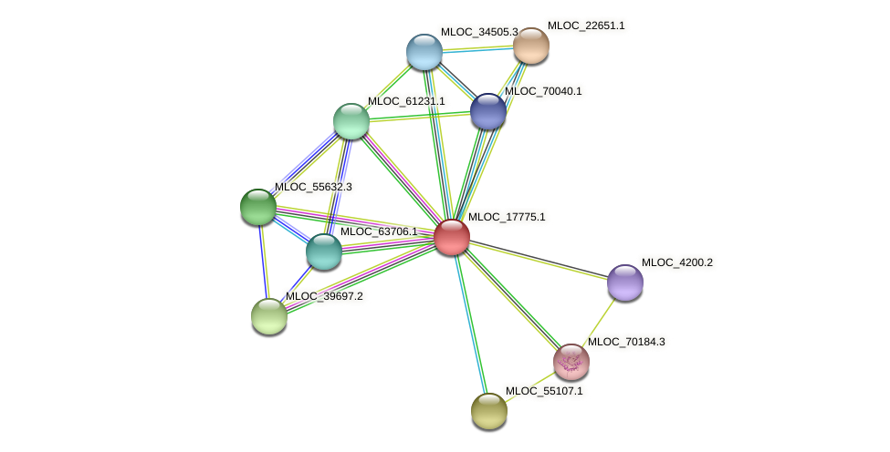 MLOC_17775.1 protein (Hordeum vulgare) - STRING interaction network