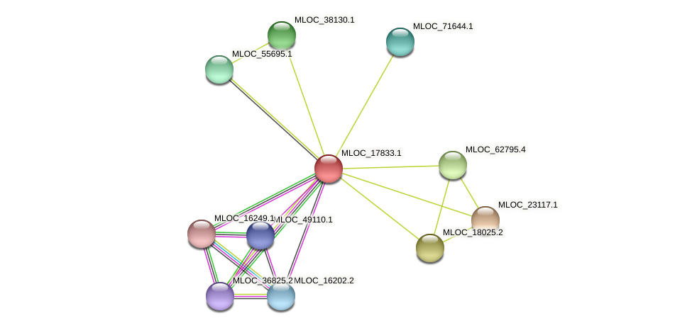 MLOC_17833.1 protein (Hordeum vulgare) - STRING interaction network