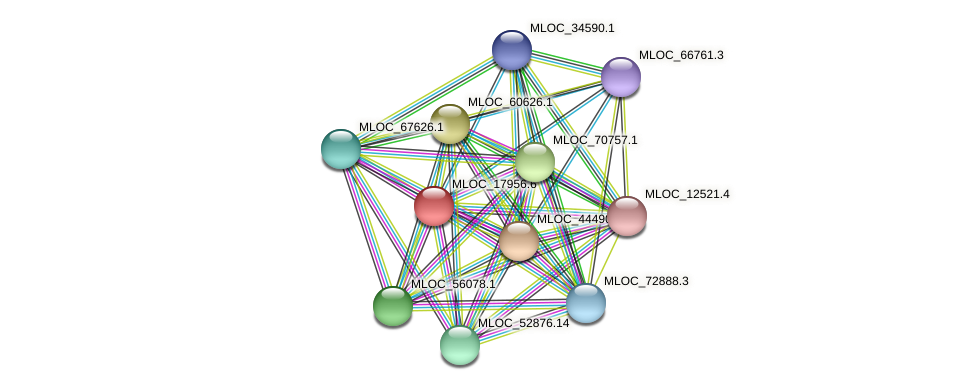 MLOC_17956.6 protein (Hordeum vulgare) - STRING interaction network